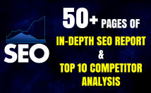 I will provide 50+ Pages of In-Depth SEO Report and Top 10 Competitor Analysis